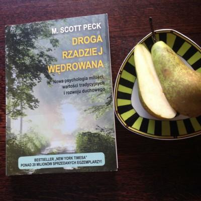 Droga rzadziej wedrowana M.Scot Peck opis